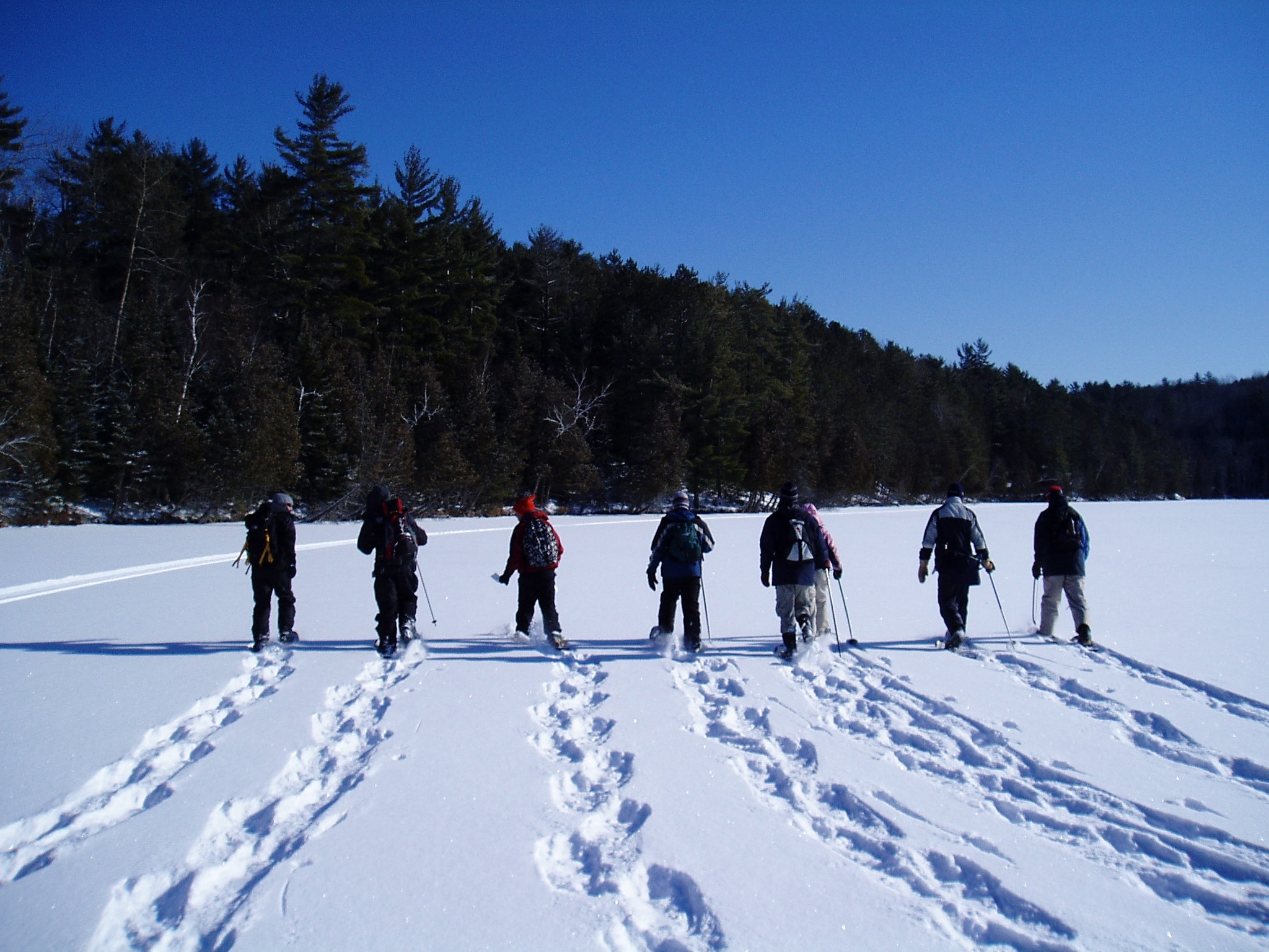 When life gives you snow…. go snowshoeing
