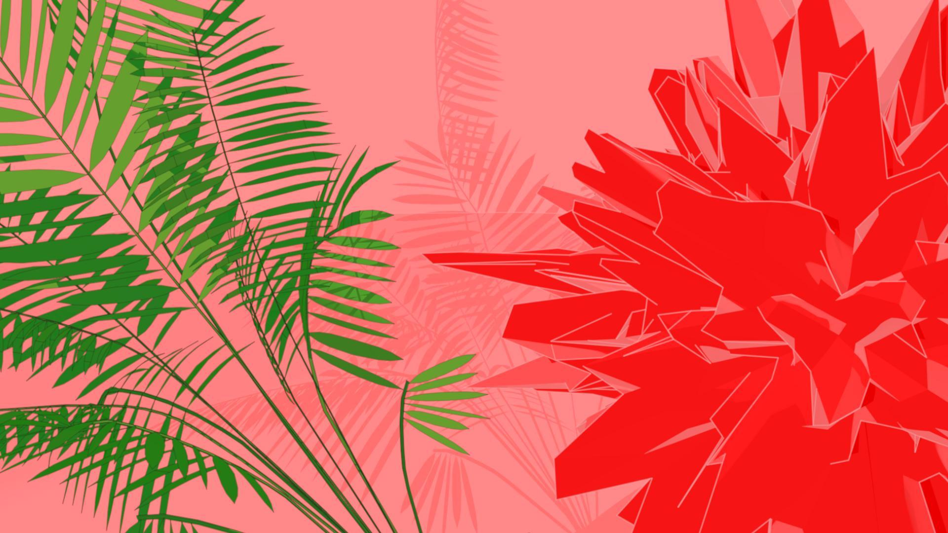 Palm_Shadow.jpg