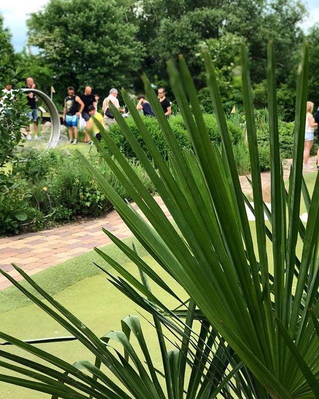 Fira midsommar med att spela minigolf hos oss. Vi har öppet på midsommarafton kl 10-18, varmt välkomna! ⛳️