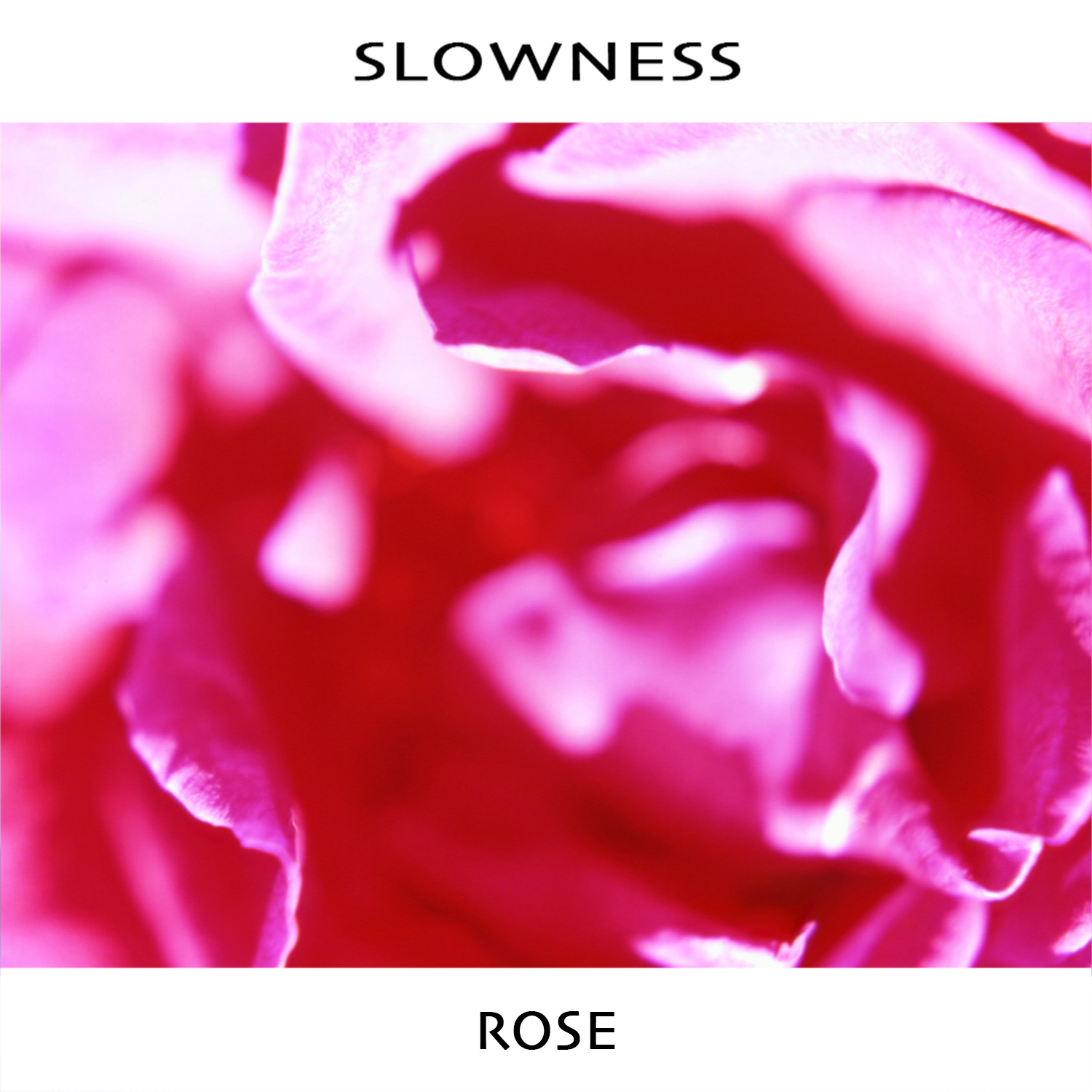 "The Big Takeover debut's Slowness ""Rose"""
