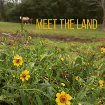 MEET land.png