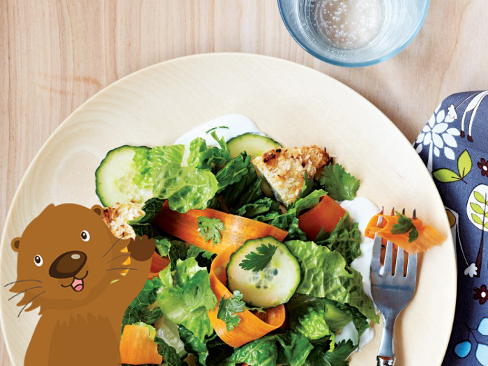 - May is National Salad Month! Salads are nutrition-packed meals, but young children not might be too fond of these leafy meals. Here are some tips for parents that can help make salads part of family mealtimes!● If your children are unsure about eating salad, try making a salad together during dinnertime. When kids are involved in the cooking process, they are more likely to try new foods because they had a hand in creating it.● When making salads for your children, simple is best. Use a few ingredients and make sure the ingredients are fruits or veggies your children have tried in the past and already like. Always ensure fruit and veggies are cut into bite-sized pieces.● Need a yummy salad that's sure to please the whole family? Try Goose's Garden Salad from Cooking with Potter the Otter! This salad is packed with garden-fresh veggies including tomatoes and cucumbers – all of which are high in nutrients, antioxidants, and vitamins.