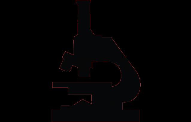 HB_Logo_Final_800pxW copy.png