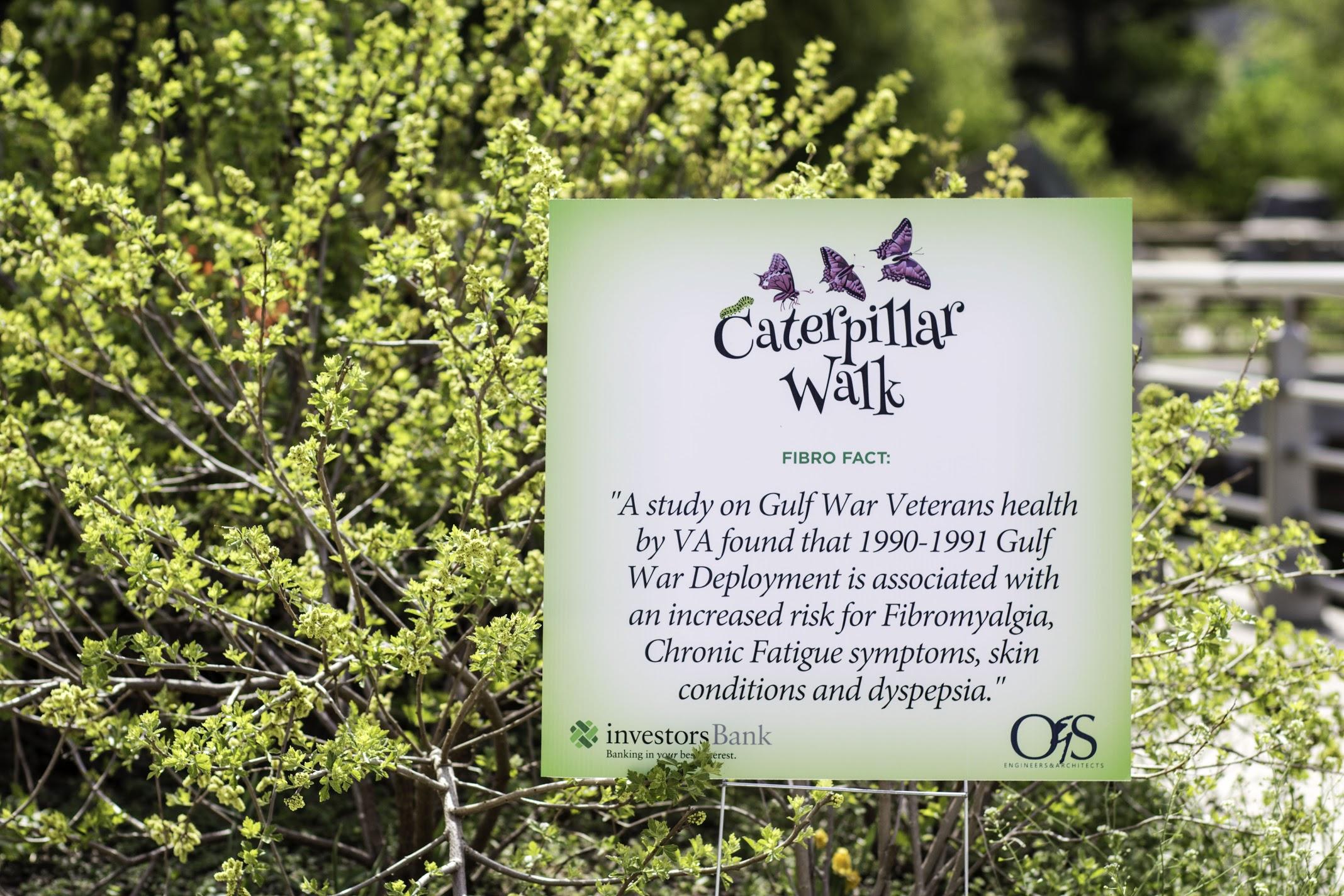 050418_FCSA_Caterpillar-136.jpg
