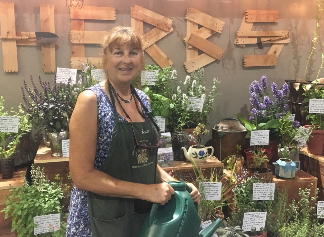 Growing Lavender Varieties brought to you by Rose Loveall-Sale of Morning Sun Herb Farm - 2 p.m. - 3 p.m. FREELearn from master gardener, herbalist, and owner of Morning Sun Herb Farm, Rose Loveall-Sale, how to grow a variety of lavender plants.