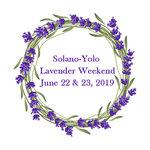 rsz_solano-yolo_lavender_festival_2019_logo_-_baskerville_old_face_bold.jpg
