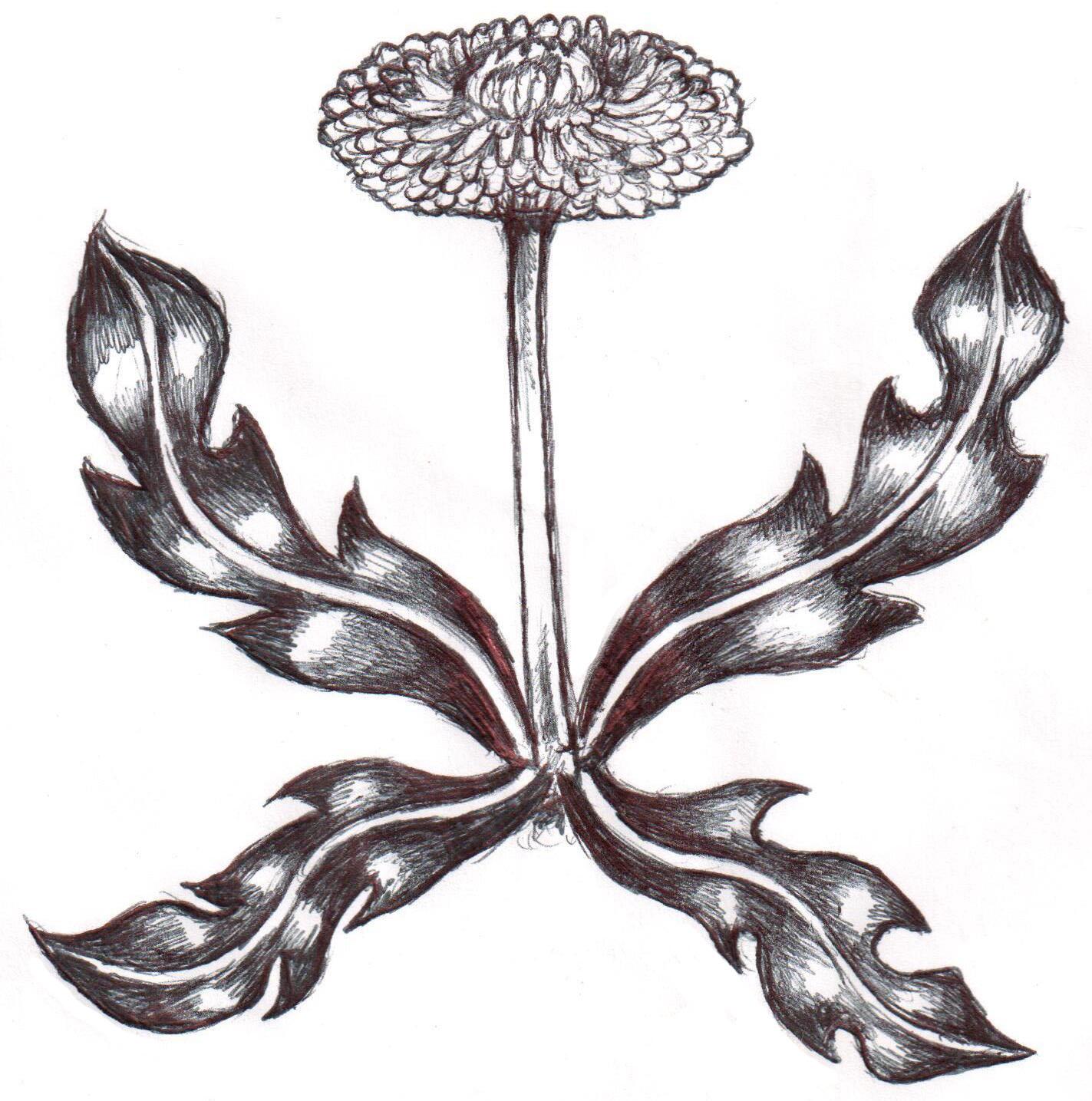 EBH Logo.png