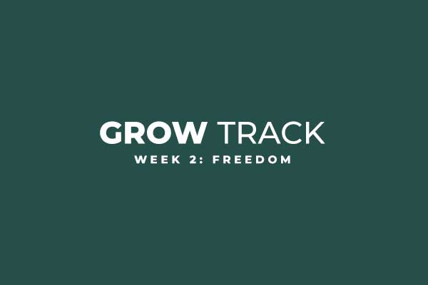 GrowTrack_002.jpg