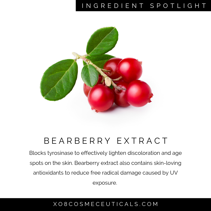 Bearberry Extract.png