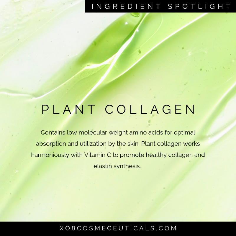 Plant Collagen.png