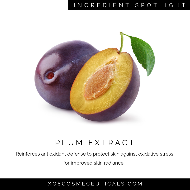 Plum Extract.png