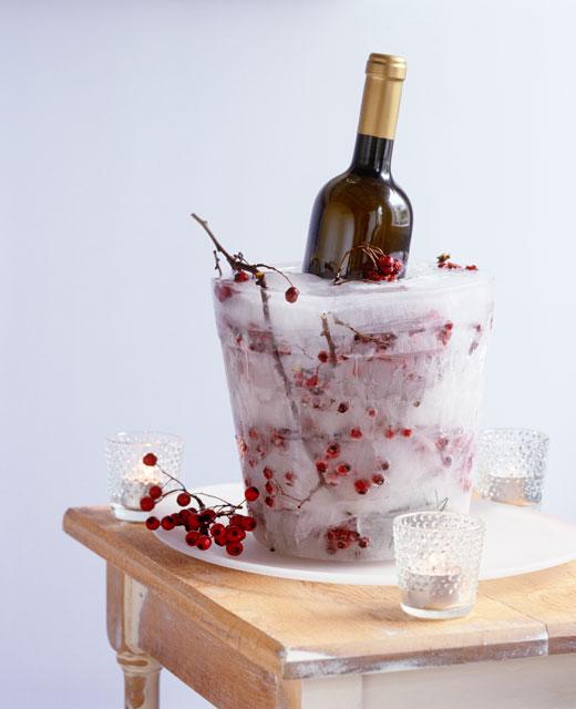 Ice Bucket Sandra Kaminski.jpg