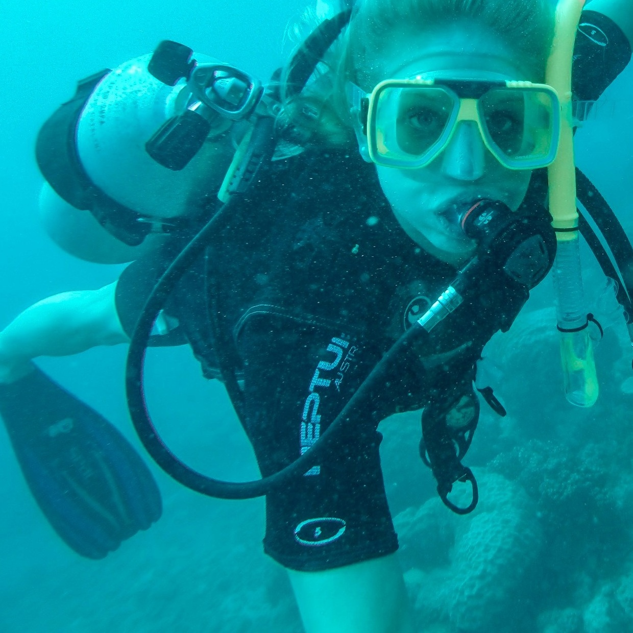 snorkel in the great barrier reef -