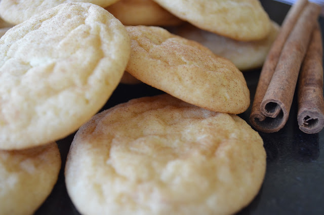Snickerdoodle recipe from scratch with maria provenzano