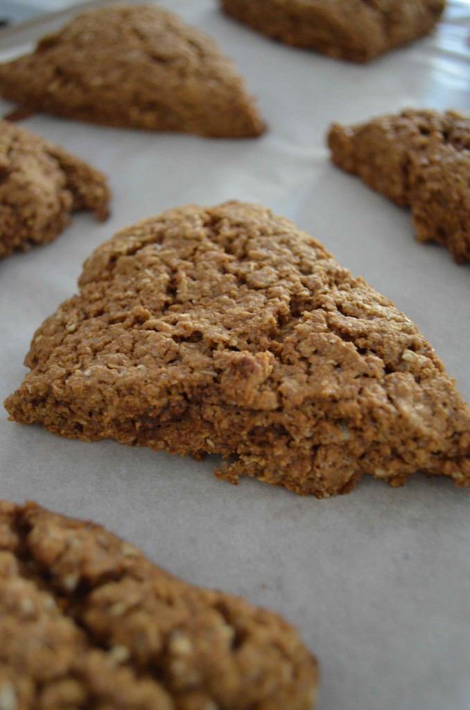 gingerbread scones 10