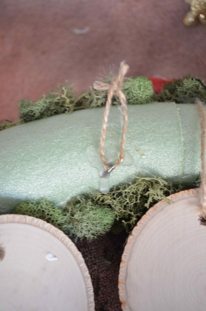 reindeer moss 8