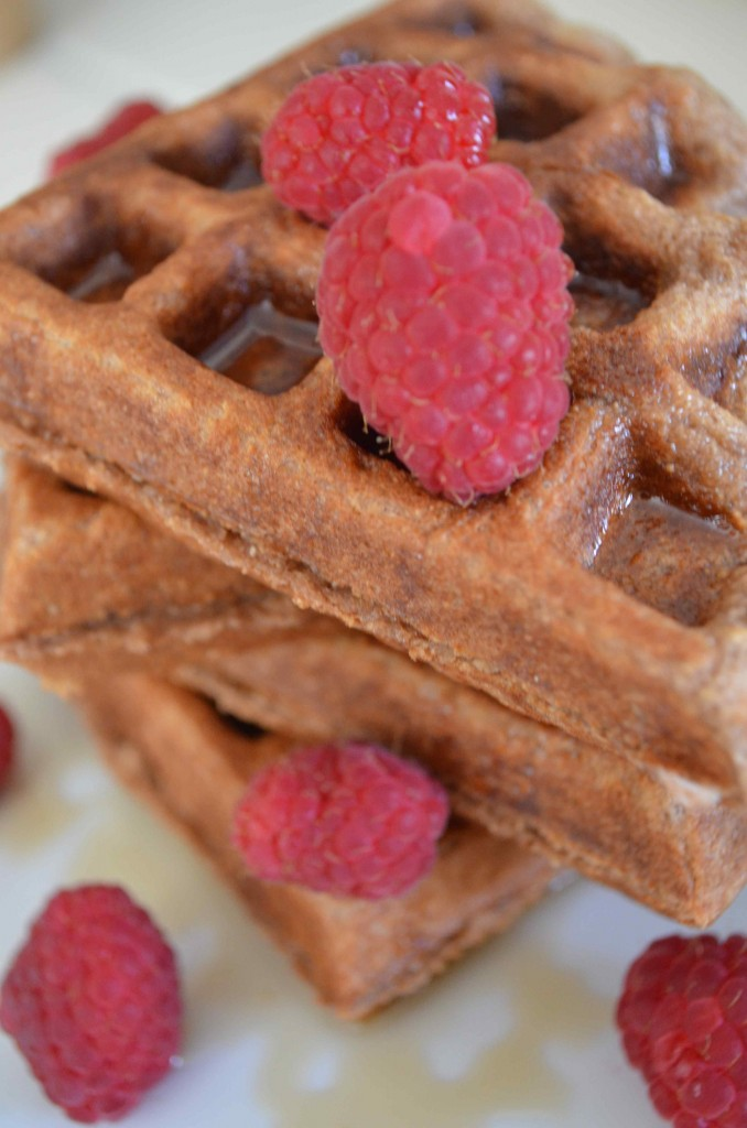 chocolate milk waffles 1