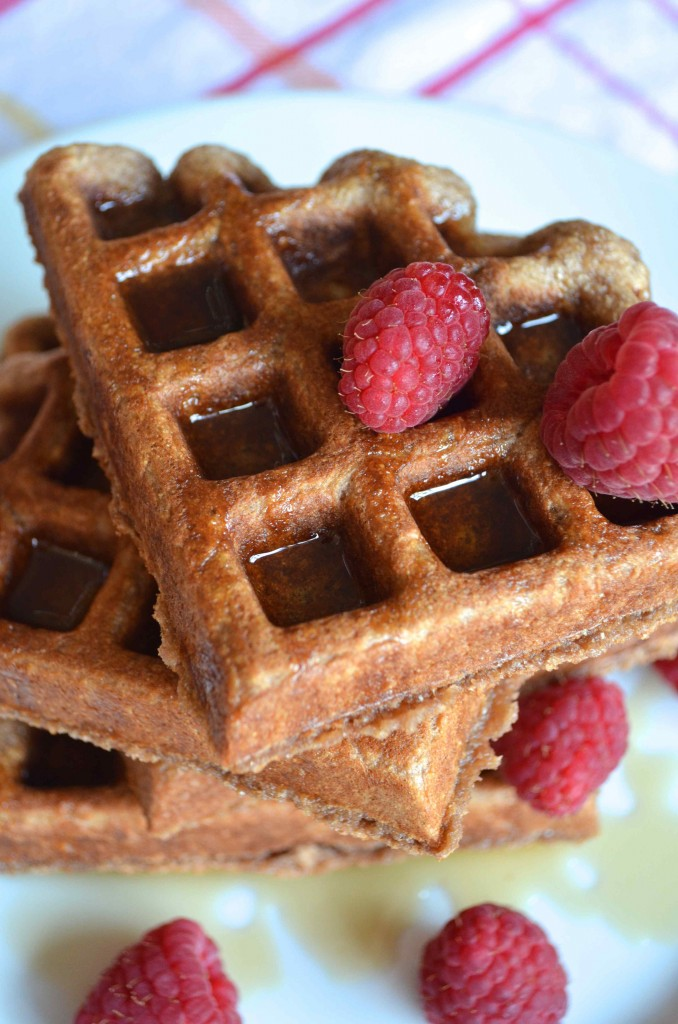 chocolate milk waffles