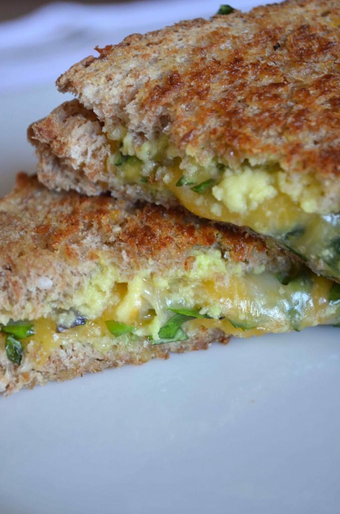 avocado cheese 8