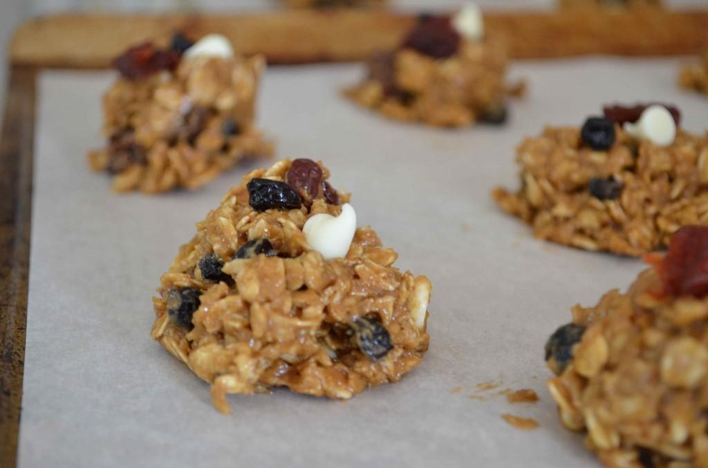 rwb oatmeal cookies 6