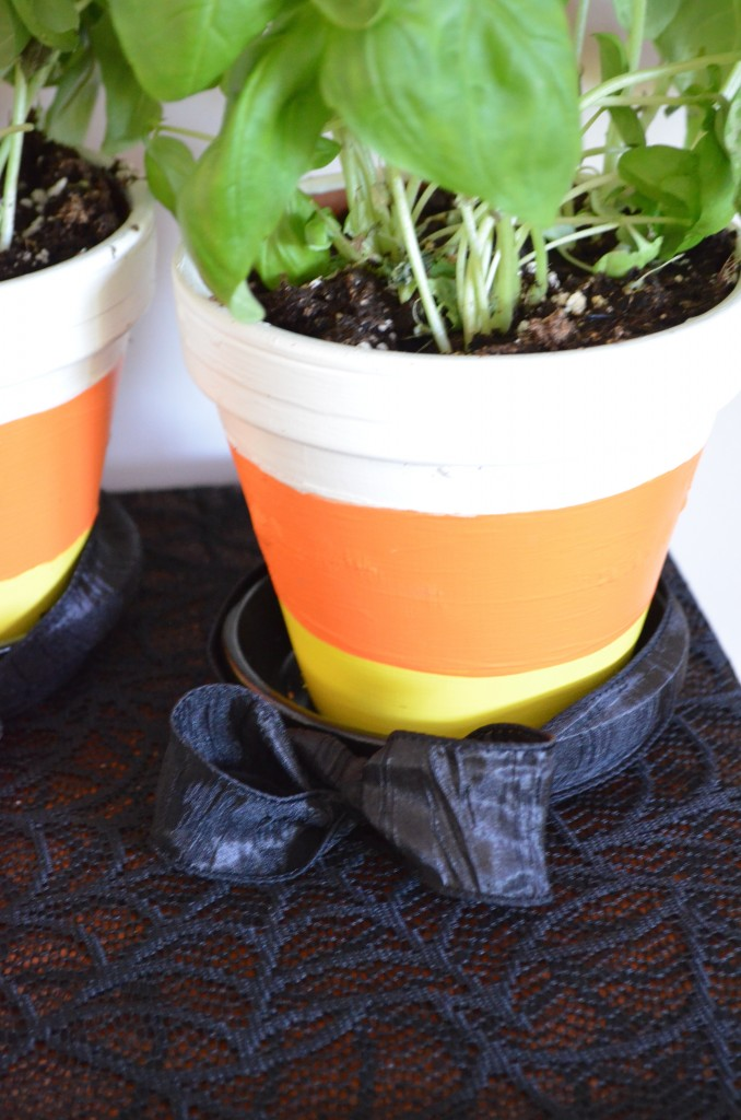 How to make candy corn flower pots! From Scratch with Maria Provenzano. These cute little pots are a really cute, and easy, decoration for Halloween
