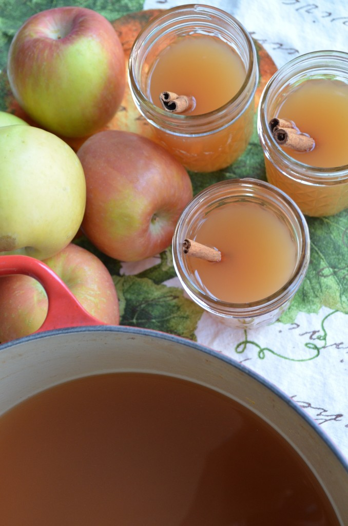 homemade apple cider from scratch with maria provenzano