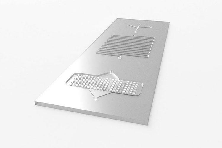 Microfluidic Glass Slide Chip.jpg
