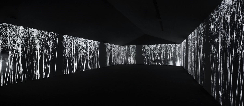 """Xue Song, """"Bamboo"""", 2013, 7 screen video installation (Courtesy of dslcollection)"""