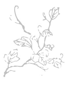 alt_branch_R.jpg