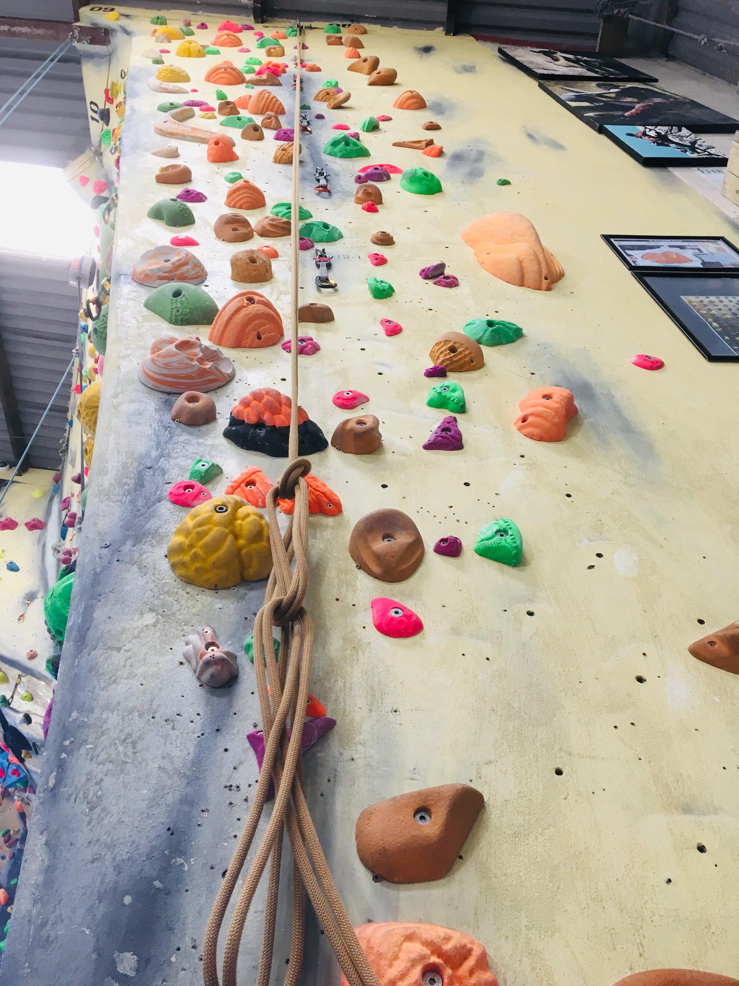 Hanger 8 - Fluro Green (F6a) NaomiFluro Orange (F6b) JoeFluro Pink (F6b+) NaomiFont Purple (F6c) Naomi