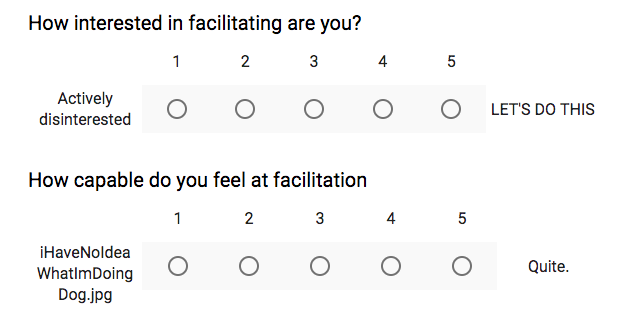 internal facilitation survey screenshot.png