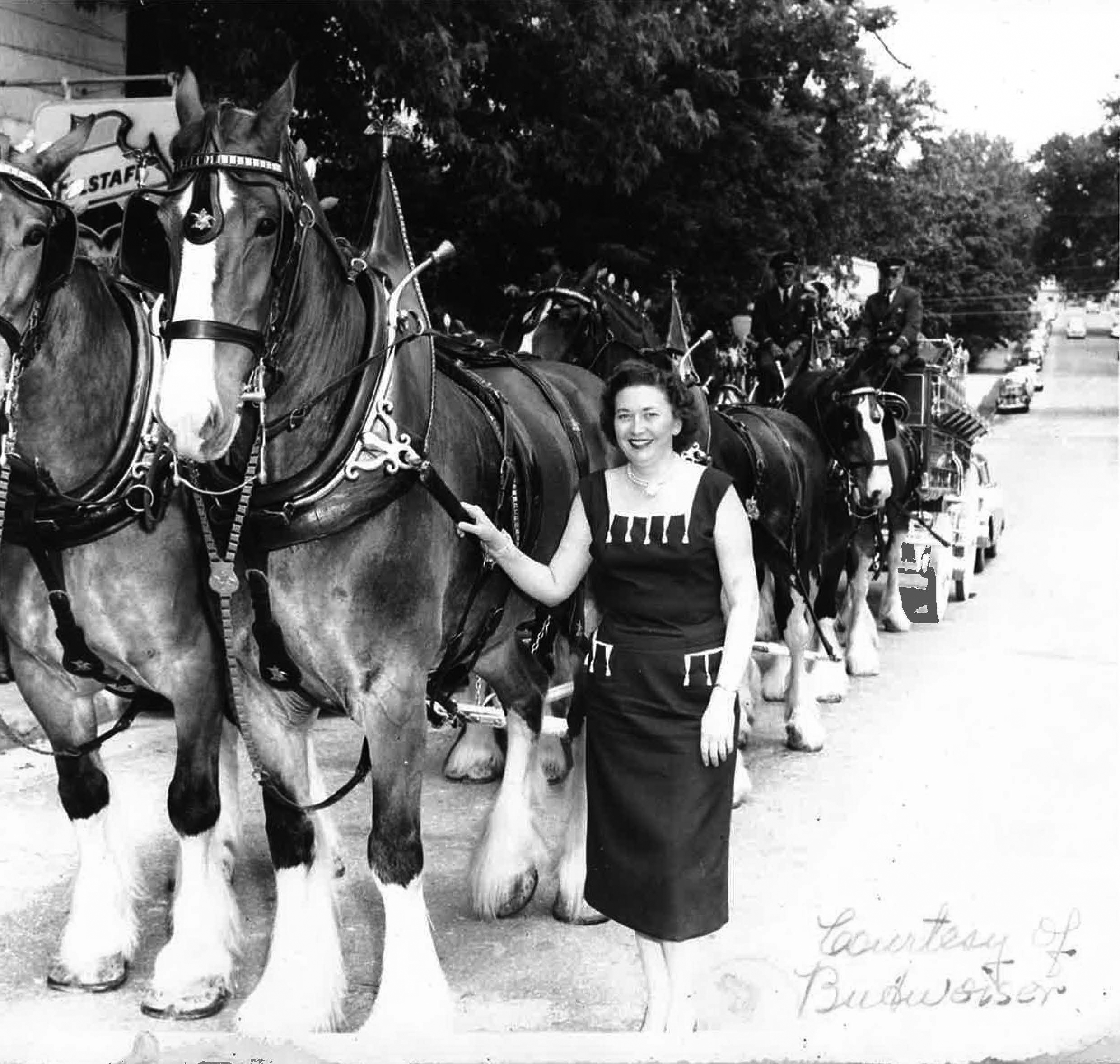 Maxine with Clydesdales - 1960ish - Partial Pic.jpg