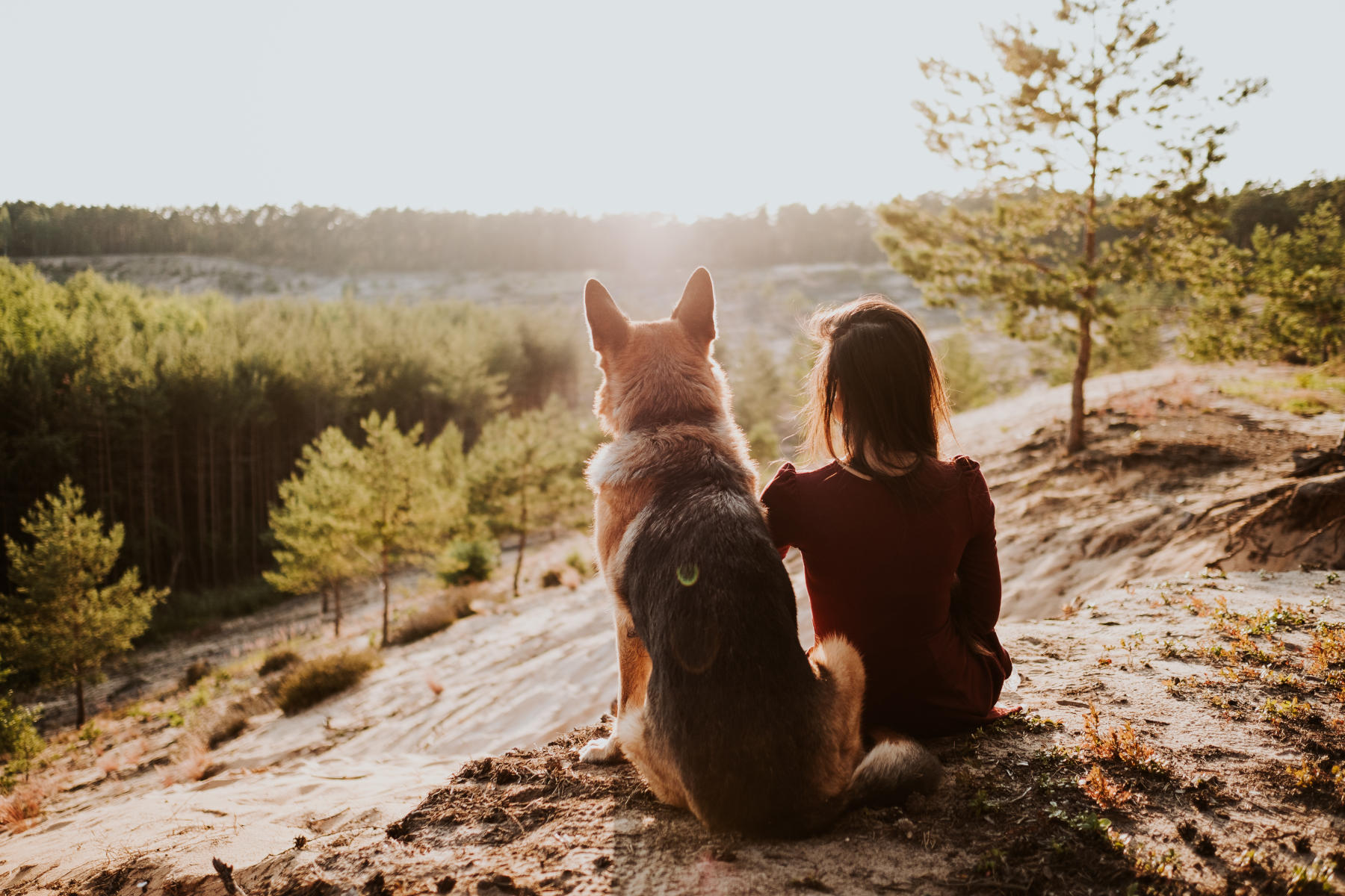 Ich liebe lange Spaziergänge. -