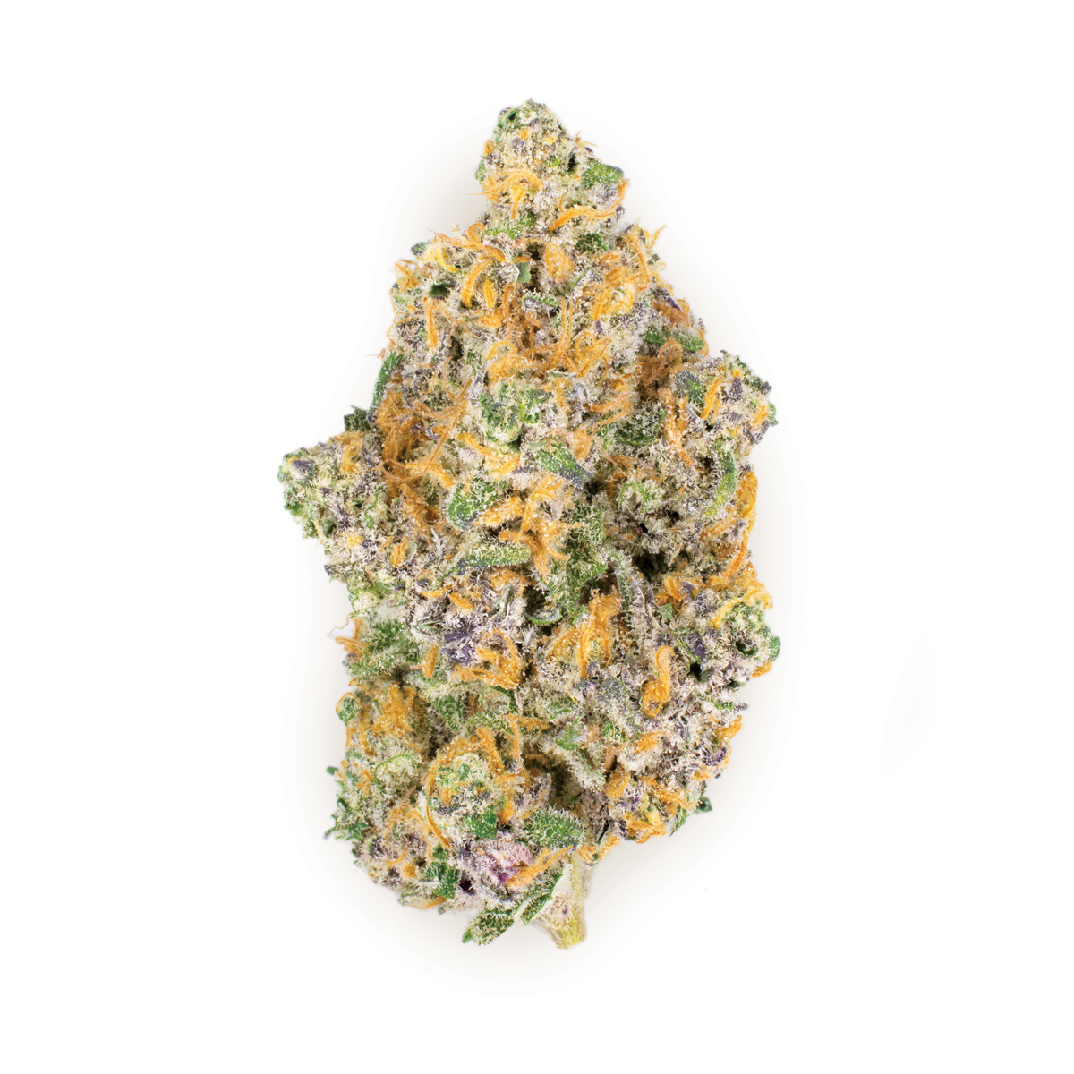 Berry jane - Sativa Dominant Hybrid26.7% THC | .17% CBDBerry Jane is sativa-dominant cross between Sweet Jane and Very Berry Haze. This strain produces popcorn-shaped buds with dark orange hairs and a high THC yield. Its fruity taste is both relaxing and uplifting.