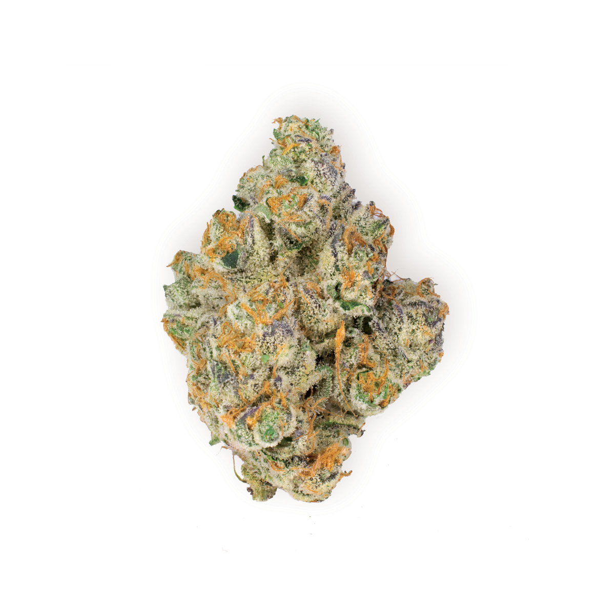 Wedding PIe - Indica Dominant Hybrid26.4% THC | .16% CBDWedding Pie is a recent indica-dominant cross between Wedding Cake and Grape Pie. Owing to its Grape Pie heritage, Wedding Pie produces fragrant buds that are fruity and sweet, with an undertone of pine and pepper. Just like a happy wedding, it elevates the mood. Unlike a wedding, it deeply relaxes the body.