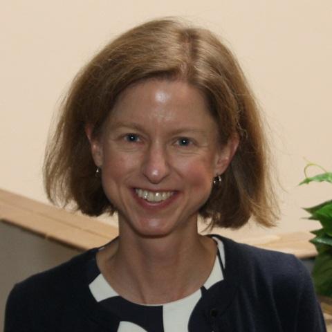 jennifer buehler, ph.d. - associate professorschool of educationsaint louis university