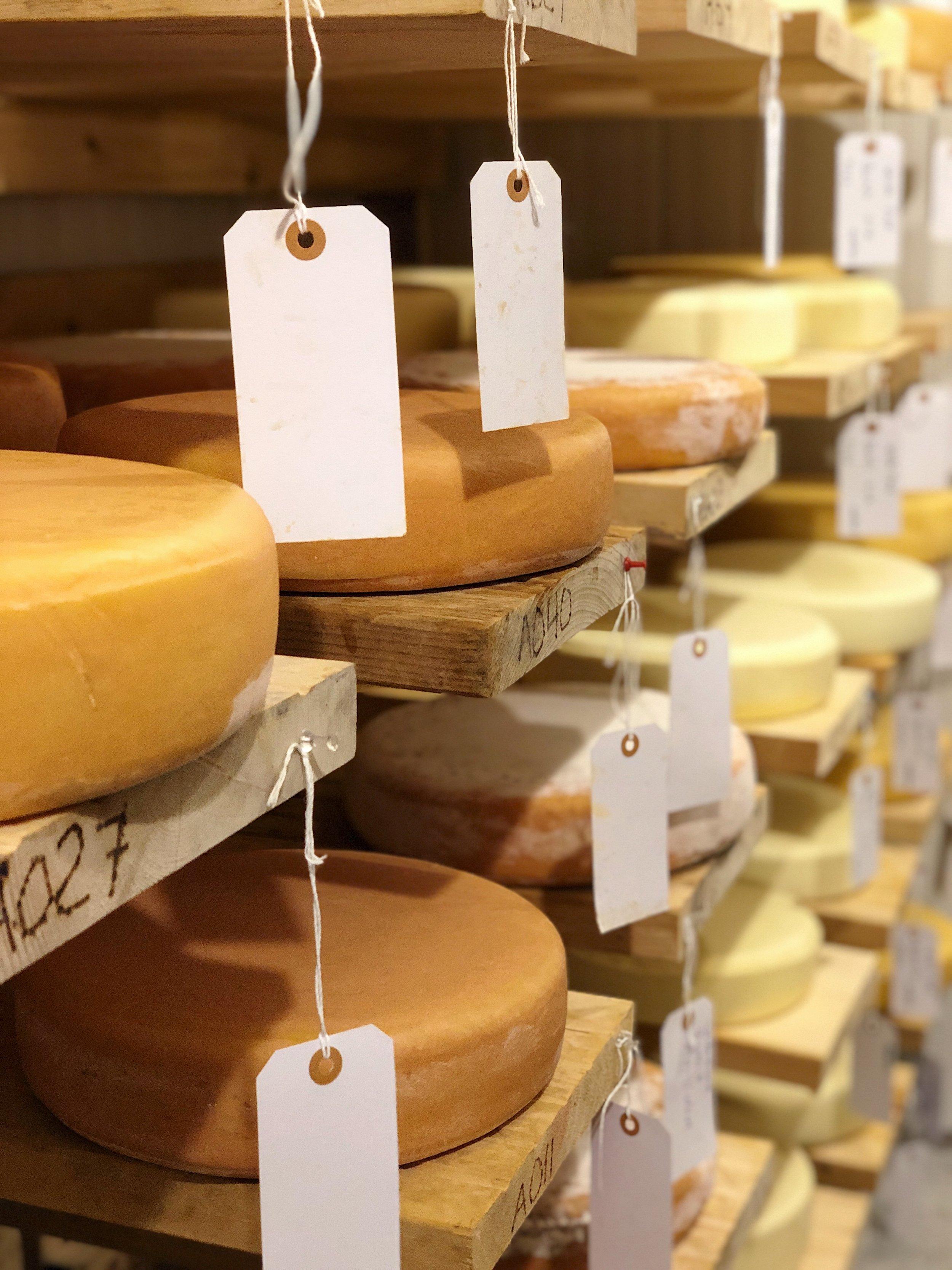 high_lawn_farm_cheese_aging_room