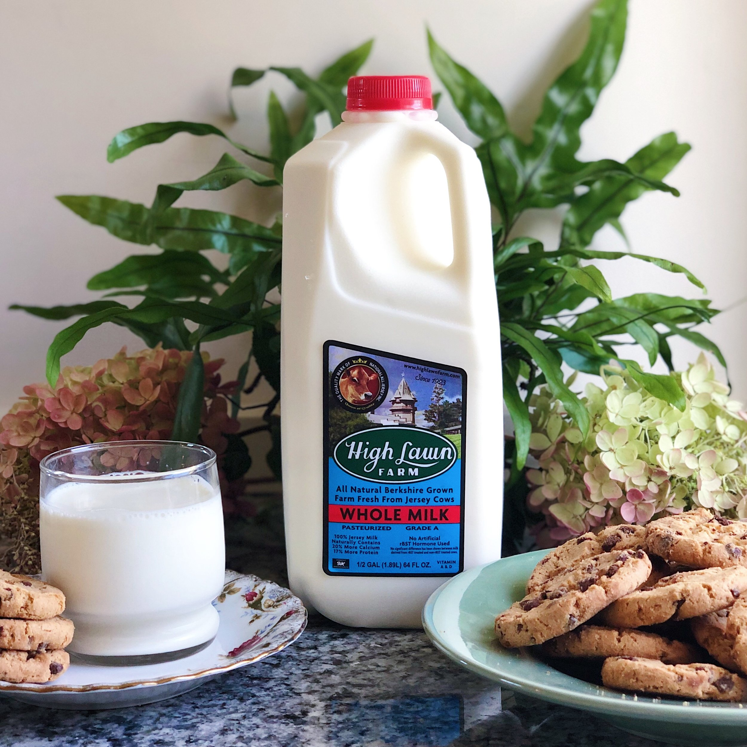 high_lawn_farm_milk_and_chocolate_chip_cookies