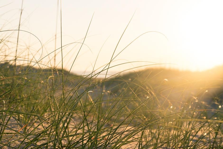 sunrise, avon, north carolina, hatteras island, dunes, sea grass
