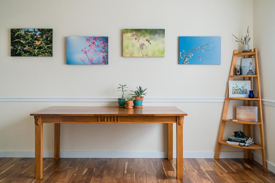 home studio, photographer, virginia beach
