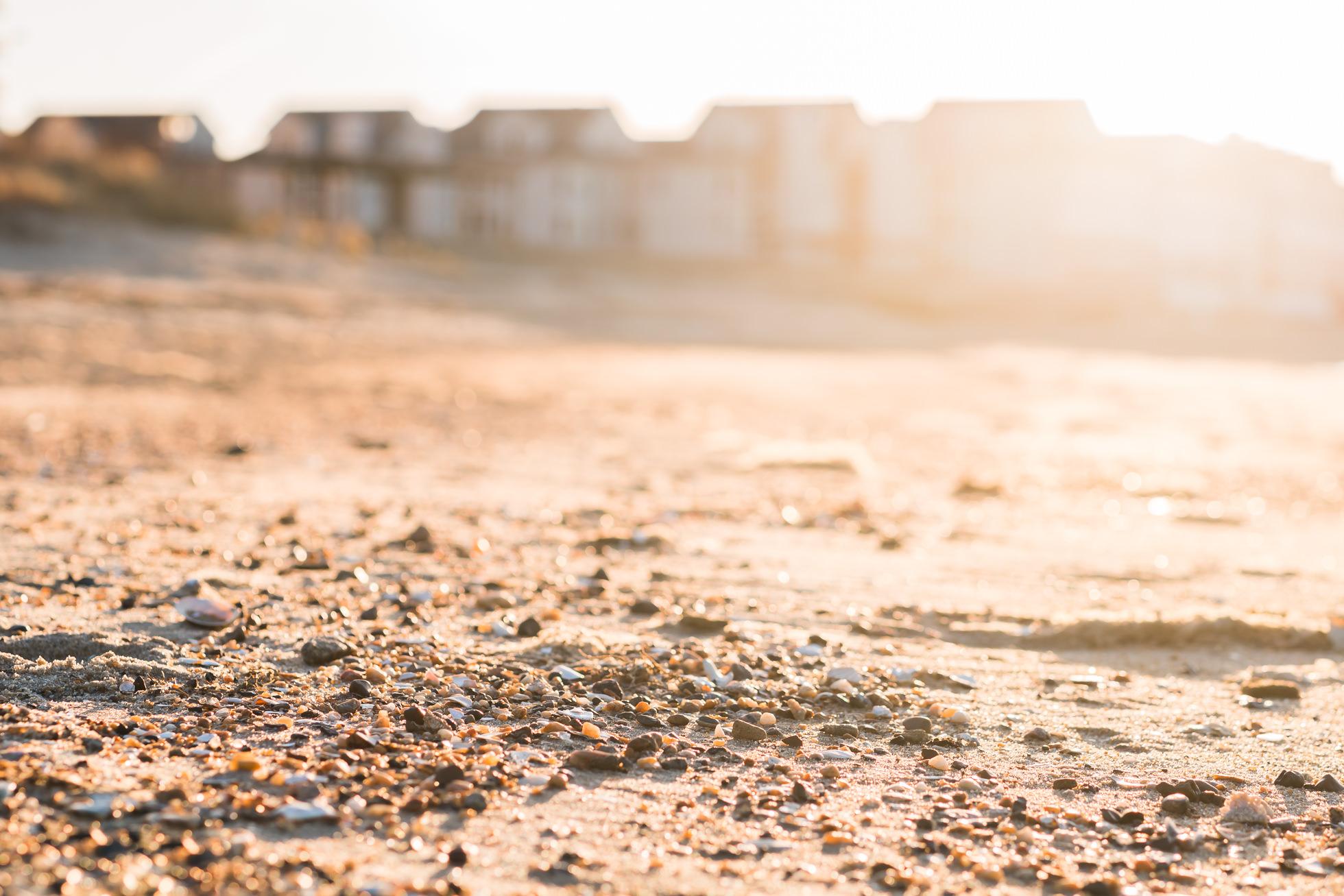 beach, virginia beach photography, nature photographer, shells