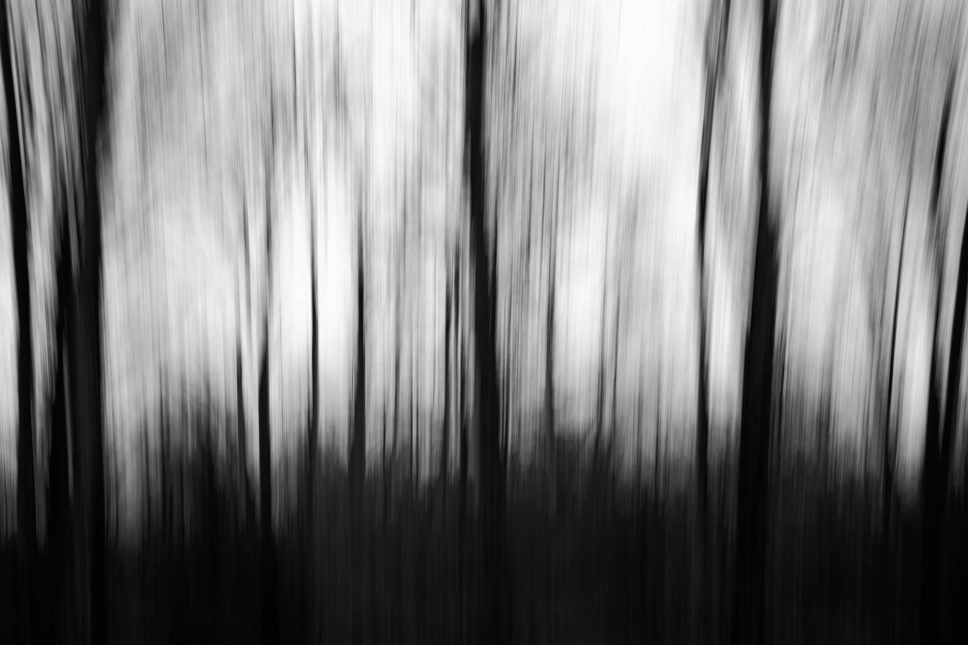 2018.01.12-Vertical-Panning--Jennifer-Carr-Photography-Virginia-Beach-4.jpg