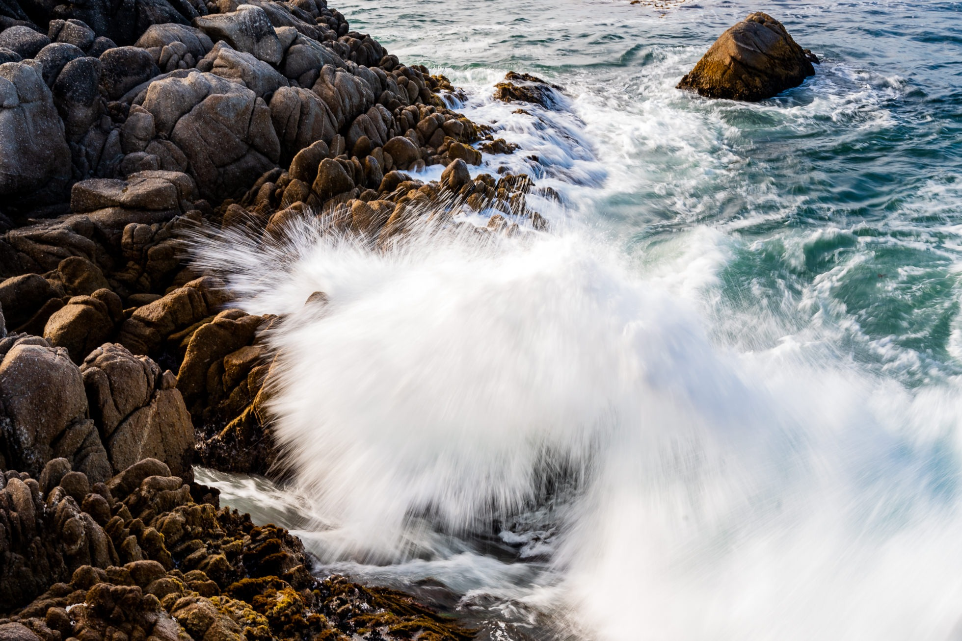 pacific grove california landscape photography