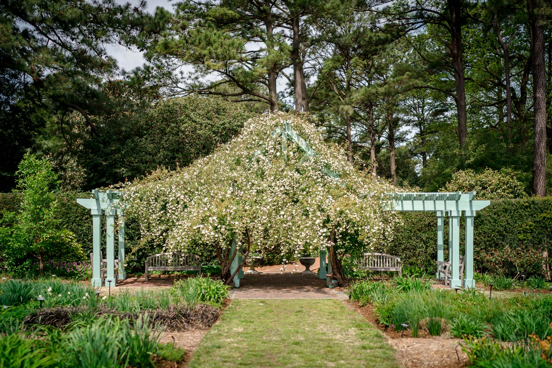 2018.04.23 Norfolk Botanical Gardens © Jennifer Carr Photography Virginia Beach-13.jpg