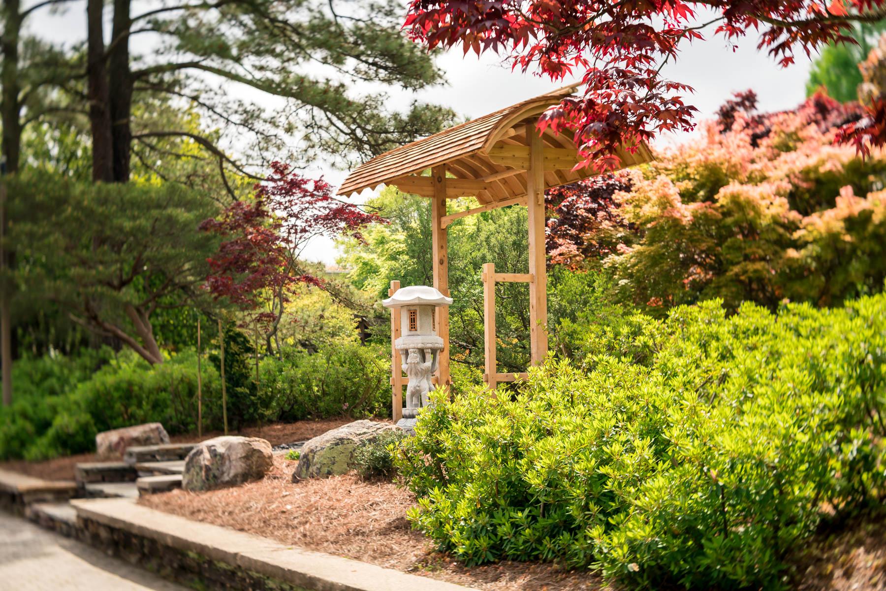 2018.04.25 Norfolk Botanical Gardens © Jennifer Carr Photography Virginia Beach-1.jpg