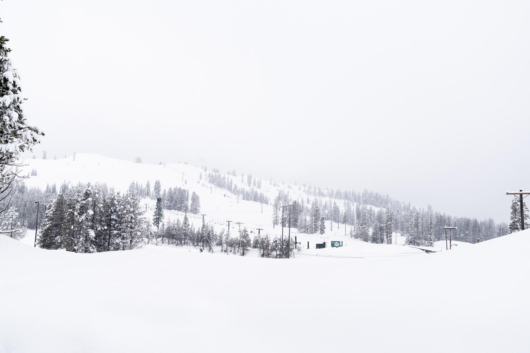 2019.03.23 Snowy Tahoe © Jennifer Carr Photography-13.jpg