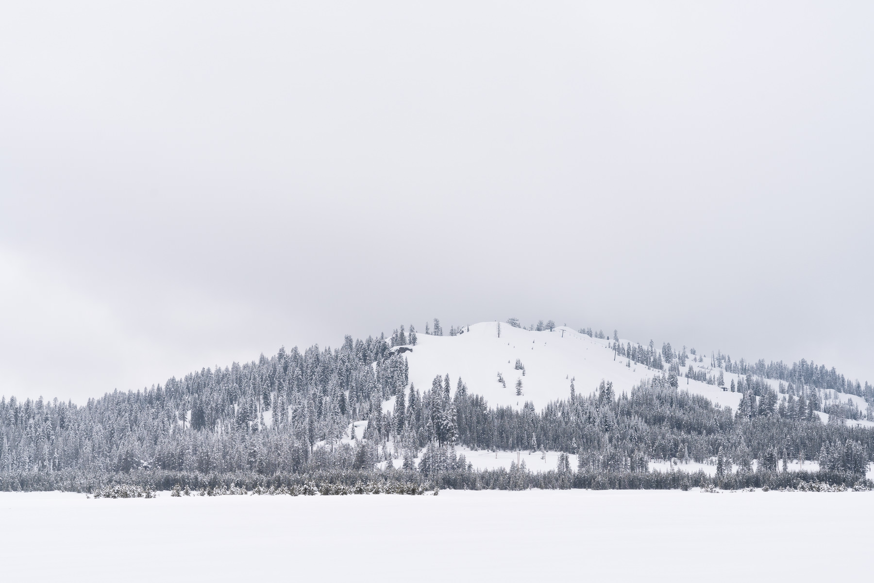 2019.03.23 Snowy Tahoe © Jennifer Carr Photography-20.jpg