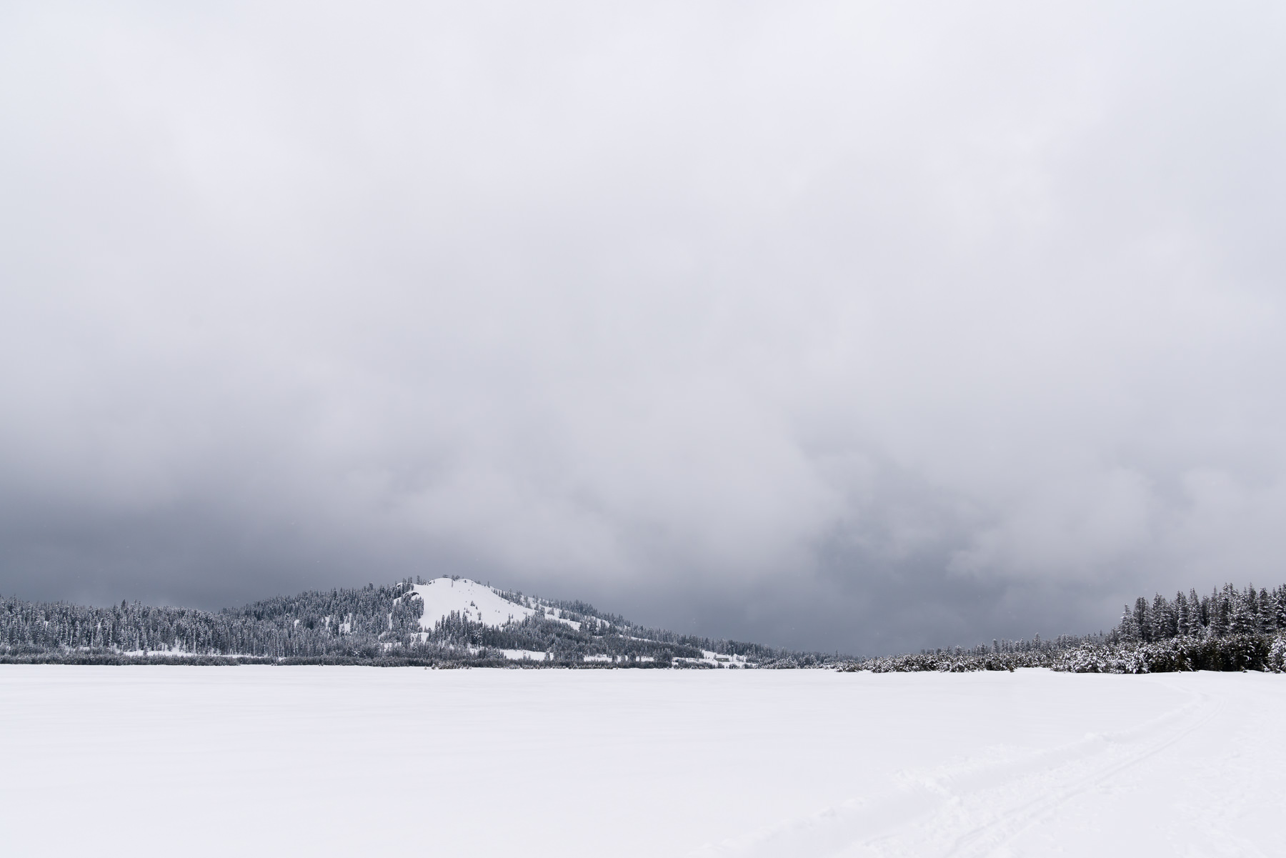 2019.03.23 Snowy Tahoe © Jennifer Carr Photography-22.jpg