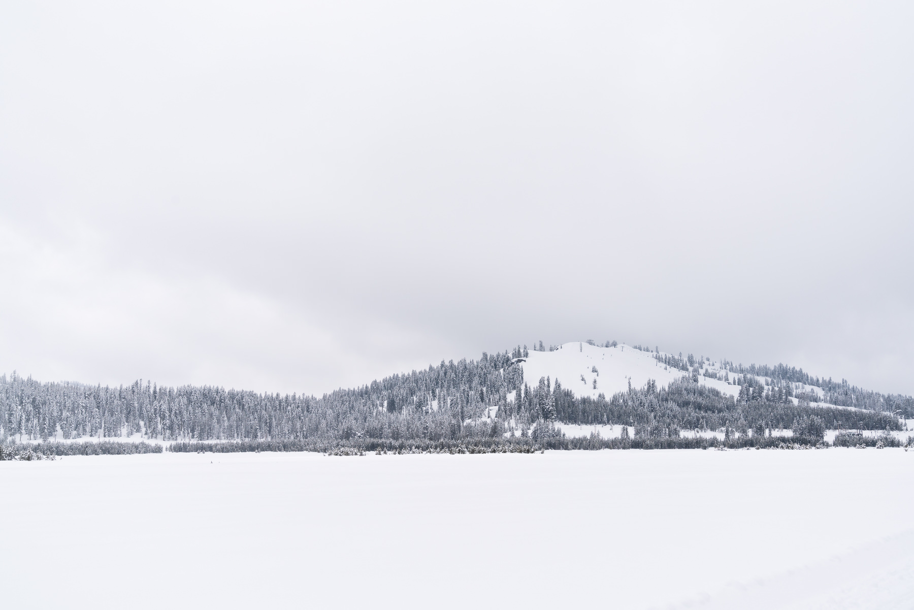 2019.03.23 Snowy Tahoe © Jennifer Carr Photography-21.jpg