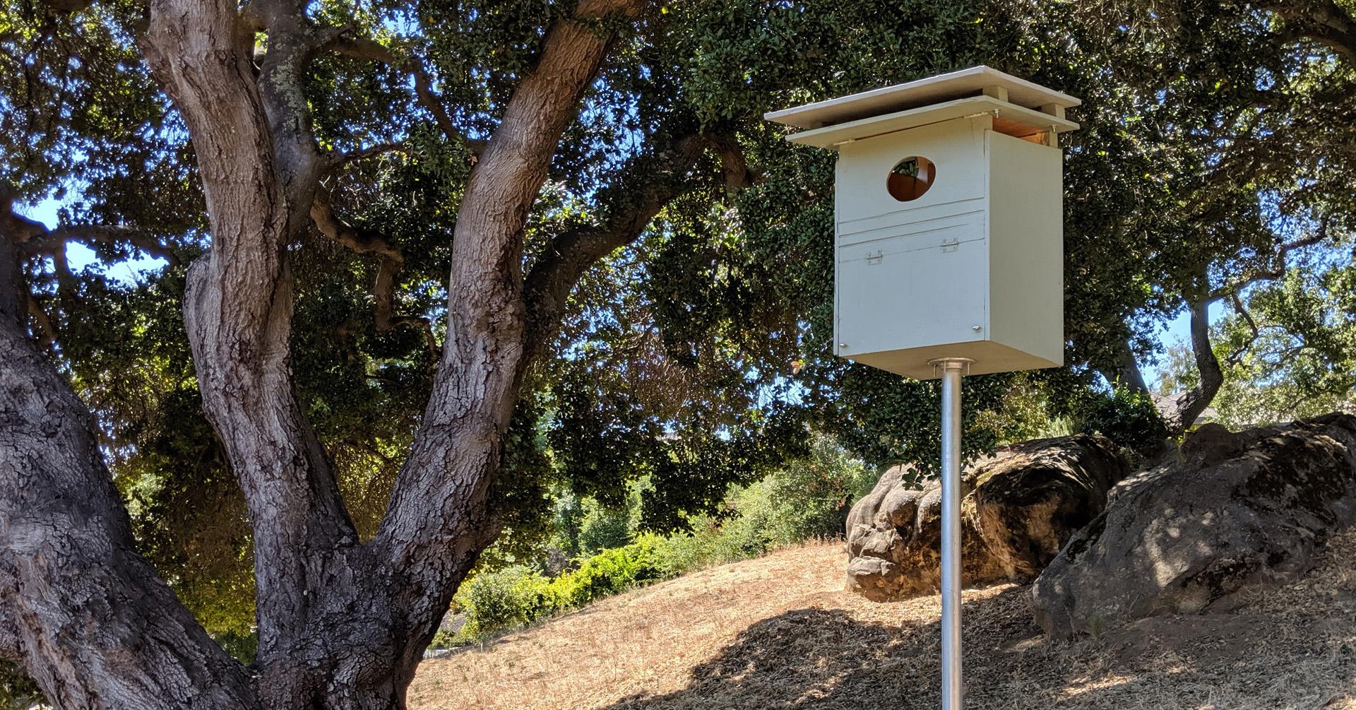 barn-owl-boxes-1920x1005.jpg